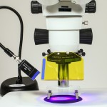 Fluorescence Adapter installed on a conventional stereomicroscope
