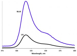 Representative fluorescence emission spectra for a coral illuminated with equal energies of blue and UV light.