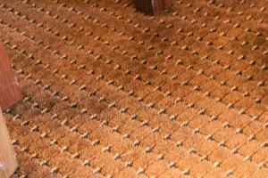 Carpet in hotel room