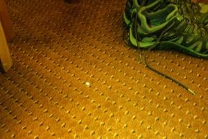 Floor with pill, white light plus fluorescence