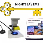 NIGHTSEA/EMS KEY Award