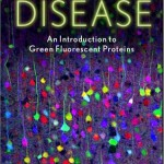Zimmer Illuminating Disease