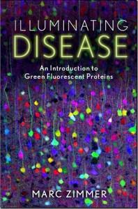 Zimmer Illuminating Disease