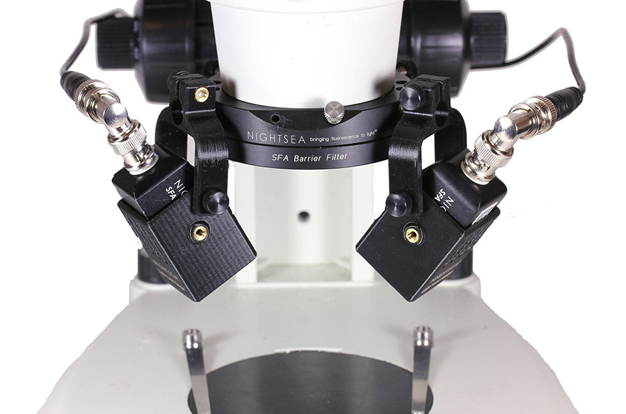 Two SFA Light Heads mounted to the NIGHTSEA adapter ring with Light Head Hangers